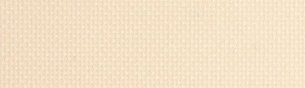 Mn-Projecten-TechS2Ivory-620x180px